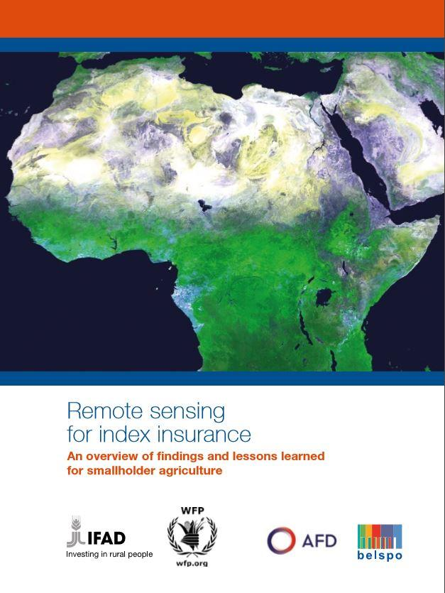 Remote Sensing for Index Insurance: An Overview of Findings