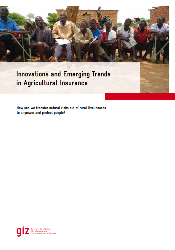 emerging trends in rural areas In this new report, giz explores the trends in agricultural insurance and public  relief as risk management tools in rural areas of developing.